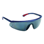 BARDEN szemüveg, füstszínű (524051)