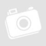 Szerszámosláda, HD Profi, erős műanyag, fémcsatos, tálcával, 440x345x355mm (84874)